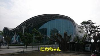 DSC_0906.JPG